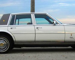 1979 Seville Gucci Edition, side view.  (Photo credit: G. Sullivan)
