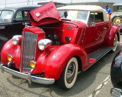 1937 Packard 2-seat roadster.  (Owned by Ron Novrit)