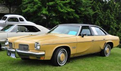 1973 Oldsmobile Cutlass Salon
