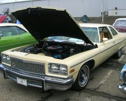 1976 Buick Electra coupe, rare model made without vinyl roof.  (Owned by Donald Bell)