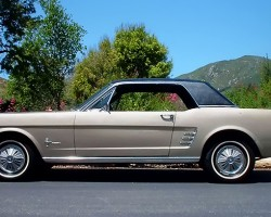 1964 Ford Mustang vinyl roof