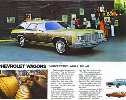 1974 Chevrolet Estate wagon ad