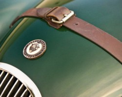 green jaguar xk120