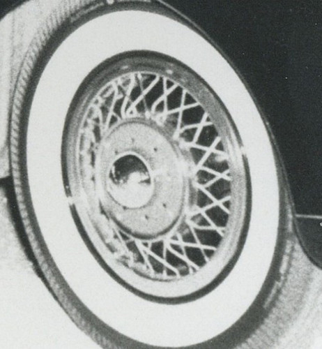 Panther wire wheel covers