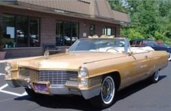 Elvis Dream Cadillac